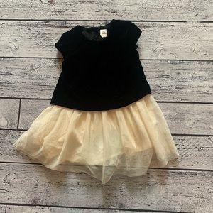 Gap velvet and tutu dress